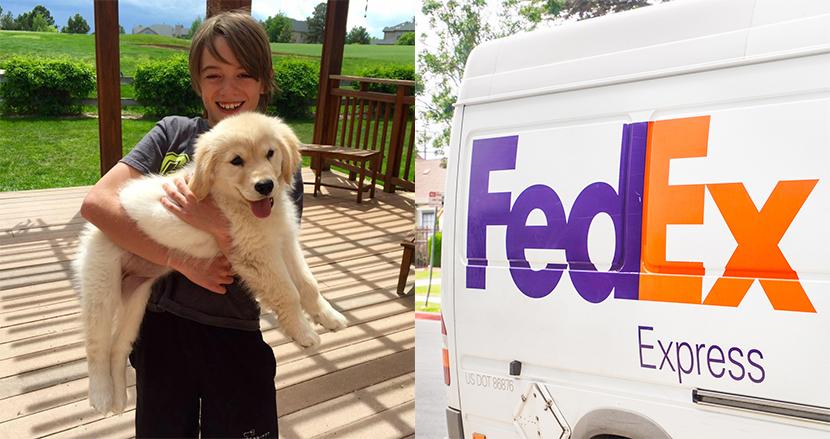 家にいたはずの飼い犬をFedExが自宅にお届け!宅配ドライバ―の粋な仕事っぷりが話題に