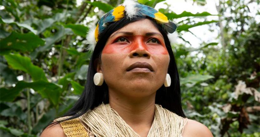 アマゾン先住民33歳女性、熱帯雨林50万エーカーを石油産業から保護し「環境分野のノーベル賞」受賞