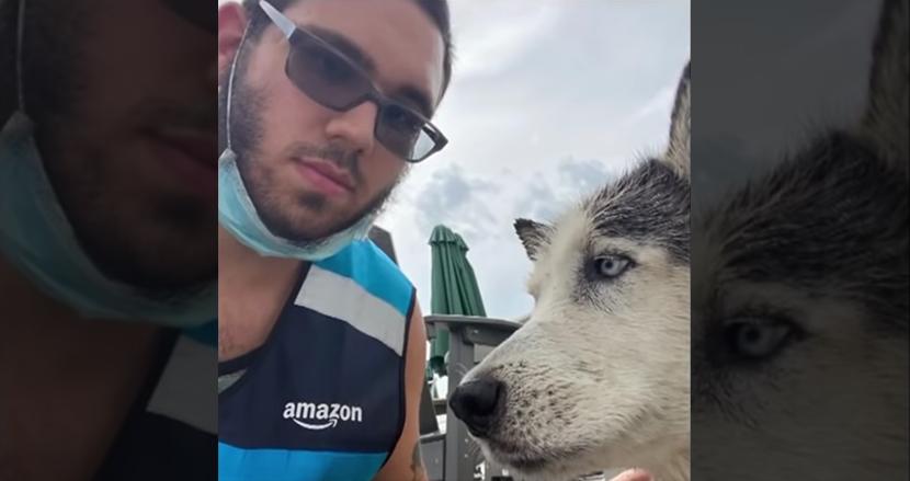 誰もいない家のプールで溺れていたハスキー犬、配送中のAmazonドライバーが発見し見事救出