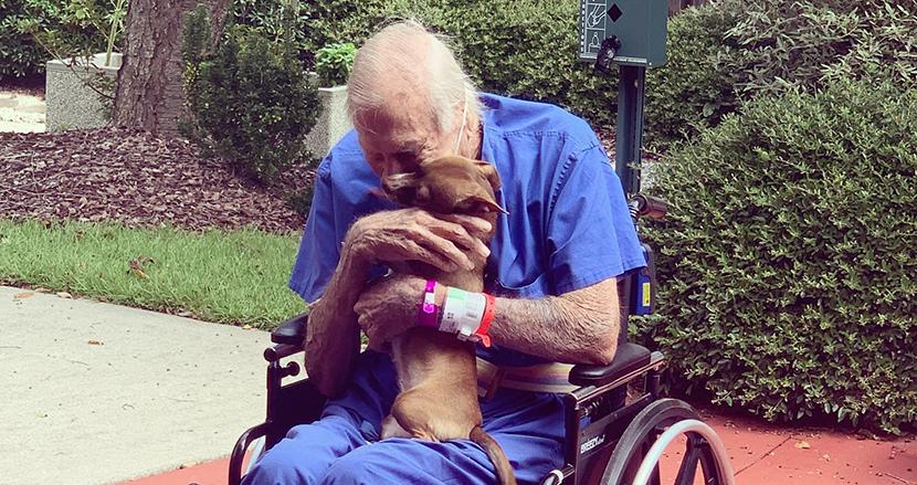 脳卒中で倒れた飼い主の命を救った一匹のチワワ。奇跡の再会を果たし、抱きしめ合う姿に感動の声