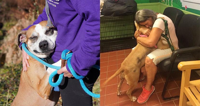 空き家に鎖でつながれ放置された犬。救助された今、出会った人すべてにハグで感謝を伝える