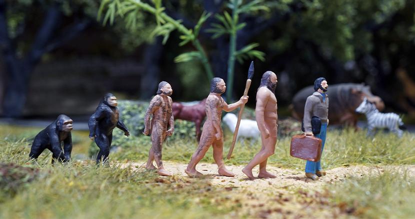 骨の軽量化、遺伝子の変化、体温の低下。人間の身体は今なお進化し続けている