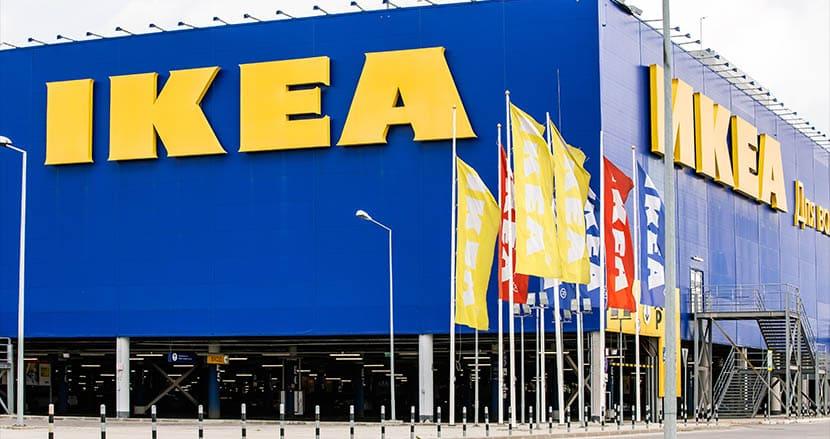 IKEA、東京ディズニーランド87個分の広さの森林を購入。開発から土地と生態系を保護するため