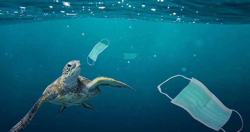 昨年1年間で15億枚以上の使い捨てマスクが世界中の海に廃棄。コロナ禍で深刻化する海洋プラスチック汚染