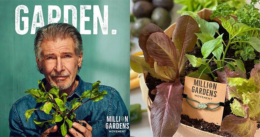 イーロン・マスクの弟が手掛ける画期的な食育プロジェクトがスタート!あのハリソン・フォードも参画