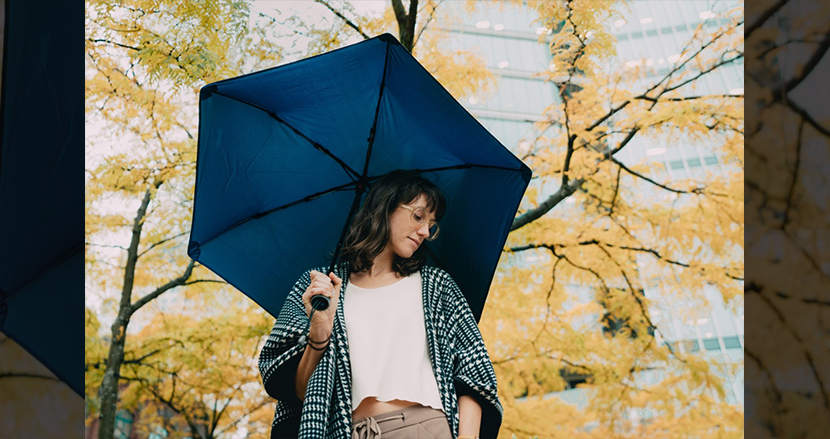 あなたが人生最後に買う傘になるかもしれない高耐久アンブレラ「Hedgehog Carbon」