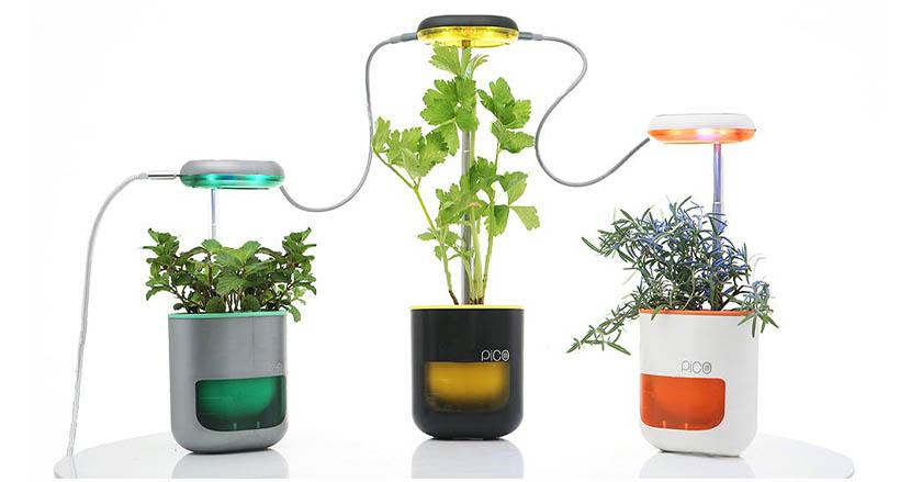 日光も水やりもいらない手のひらサイズの家庭菜園栽培キット「PICO」。部屋の中で緑を育てるための最も手軽なプロダクト